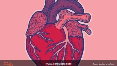 تصویر چه غذا هایی بر سلامت قلب موثرند؟